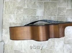 Aria Acoustic Electric Fretless Bass Guitar, 4-string