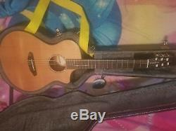 Breedlove Pursuit Nylon CE Acoustic/Electric Nylon String Guitar with hard case