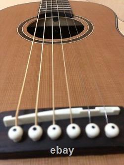Caraya Parlor-610 Electric-Acoustic Guitar EQ Natural Matt+Free Gig bag, 3 Picks