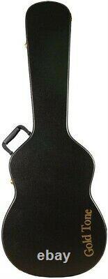 Gold Tone Steel Metal Resonator Acoustic Electric Dobro Guitar & Case Paul Beard