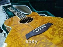 Ibanez aes10eam1201 acoustic electric guitar + Hard Case