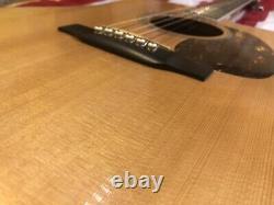 Martin DC-16RGTE Acoustic Electric Guitar