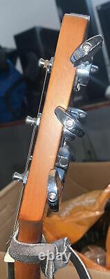 Takamine G Series Acoustic Guitar EG520S