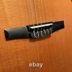 Taylor NS74ce Nylon String Classical Acoustic Electric Guitar with Case
