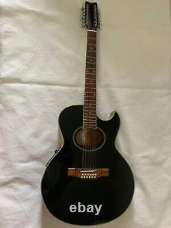 WASHBURN EA20M-12BK Electric Acoustic 12-Strings Guitar Black